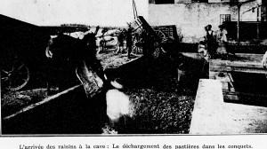 1930 pastières et conquets